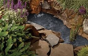 Building A Fish Pond In Your Backyard by How To Create A Backyard Pond This Old House