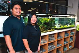 Aquascape Shop Aiea Couple Grows A Business Family Under The U0027sea U0027 West News