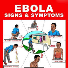 17 Best Ebola Humor Images - urdu ebola virus disease symptoms care causes treatment fashion