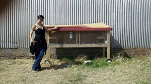 Home Made Rabbit Hutches Rabbit Cage Ptci Classifieds