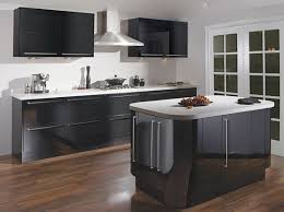 Idea Kitchen Design Kitchen Delectable Small L Shape Kitchen Design Using Stainless