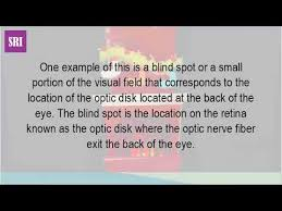 What Is The Blind Spot What Is A Blind Spot In Psychology Youtube