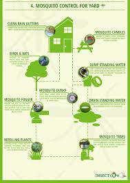 infographics for mosquito season recoil offgrid
