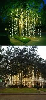 25 unique outdoor trees ideas on outdoor