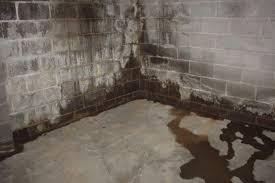 damp basement walls in evans city pa basement waterproofing