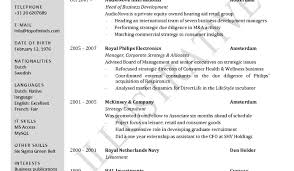 resume stunning design resume format word 12 job download