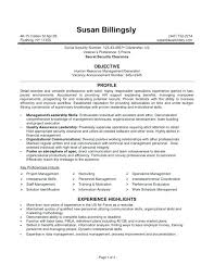 resume format for government resume format for government passionative co