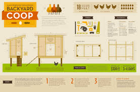how to build a backyard chicken coop chicken coop plan chicken