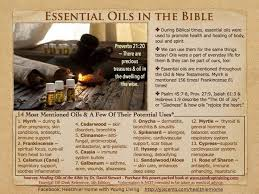 the healing oils of the bible 10 frequently used oils in the