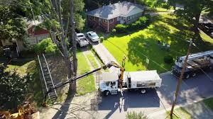 altec remote controlled tree removal grapple saw demo