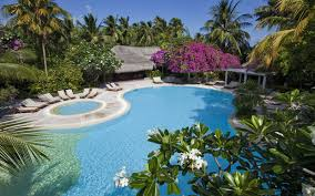 beautiful bungalows maldives beautiful hotel swimming pool bungalows dma homes 73592