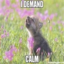 Insanity Wolf Meme - i loooove waffles looooooove em meme baby insanity wolf 16457