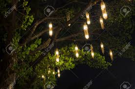 Hanging Tree Lights by Lanterns Hanging From Tree To Decorate Made Of Wicker From Bamboo