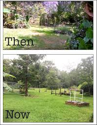 crafty hope garden and property progress