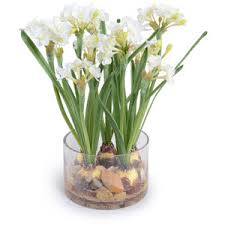paperwhite flowers new growth designs paperwhite narcissus faux flowers polyvore