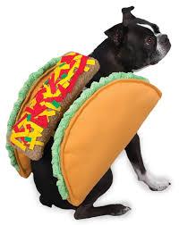 Taco Costume Casual Canine Taco Costume Multiple Sizes