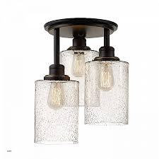 Econo Light Landscape Lighting Elegant Close To Ceiling Light