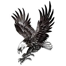 bird tattoo for men large eagle temporary tattoo waterproof for men black tattoo