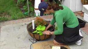 How To Make A Self Watering Planter by How To Make A Hanging Basket Self Watering Youtube
