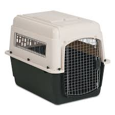 Petmate Indigo Plastic Dog Kennels U2013 Next Day Delivery Plastic Dog Kennels From