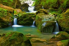 tropical waterfall hd wallpaper 6990477