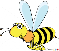 cartoon drawing wasp how to draw wasp insects drawing sketch