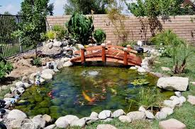 Backyard Bridge Garden Bridge Tropical Landscape Los Angeles By Redwood
