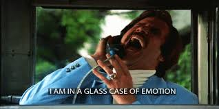Glass Case Of Emotion Meme - 25 signs you are totally smitten