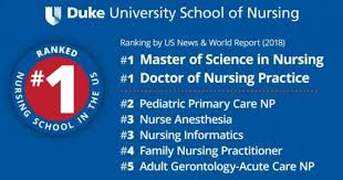 Np Full Form In Resume Duke Of Nursing
