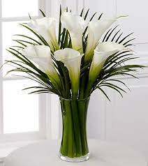 Calla Lily Flower Delivery - send flowers same day flower delivery florist online flower