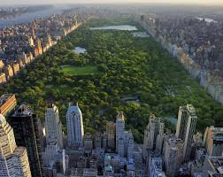 new york academy new york city