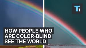 History Of Color Blindness How People Who Are Color Blind See The World Youtube