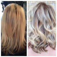 opposite frosting hair kit transformation minimizing the line of demarcation career salons