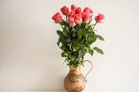 Free Vase Free Images Blossom Petal Bloom Pink Leaves Free Flowerpot