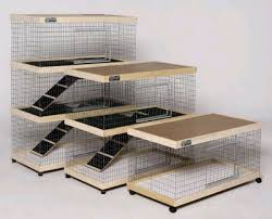 Rabbit Hutch Indoor Large Best 25 Cages For Rabbits Ideas On Pinterest Guinea Conakry