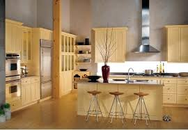 Eco Kitchen Cabinets Eco Friendly Milk Paint On Shaker Inspired Cabinets Yellow Kitchen
