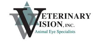 Are Dogs And Cats Color Blind What Do Dogs And Cats See Veterinary Vision