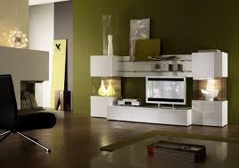 Hallway Color Ideas by Living Room Black Wood Floors Amazing Modern Living Room Remodel