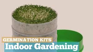 germination kits indoor gardening plant growth kits youtube