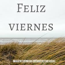 imagenes de viernes chelero imágenes de feliz viernes comienza el fin de semana