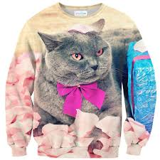 cat sweater cat sweater shelfies