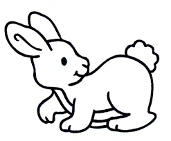 rabbit coloring picture rabibit color pages print free