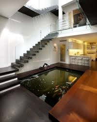 modern indoor koi pond of contemporary home with stained timber