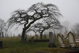 the best haunted graveyard tours in orange county cbs los angeles