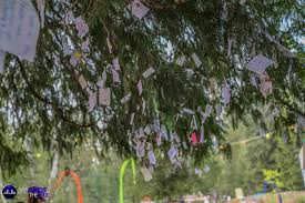 Wish Tree Shambhala The Wishing Tree U2014 Bass Feeds The Soul