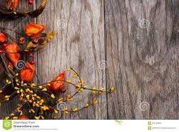 autumn halloween background fall and halloween background stock photo image 60176988