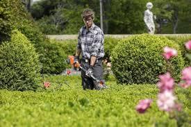 Transform Your Backyard by Tips To Transform Your Backyard
