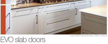 Slab Cabinet Door Slab Door Styles The Showplaceevo Access Cabinet Door Style