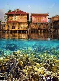 split view with tropical houses over water and coral reef fish