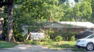 Home Decor Blogs To Follow by Tree Hit Your House 4 Steps To Follow Fairfax County Emergency